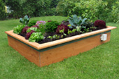 For raised bed